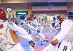 اردوی تیم ملی تکواندو زنان آغاز شد